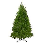 Northlight 7.5' Northern Pine Full Artificial Christmas Tree - Unlit
