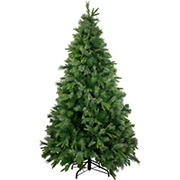 Northlight 9.5' Ashcroft Cashmere Pine Full Artificial Christmas Tree - Unlit