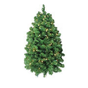 """Northlight 36"""" Green and Clear Pre-Lit Pine Artificial Christmas Column Swag - Warm White LED Lights"""