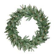 "Northlight 24"" Pre-Lit Washington Frasier Fir Artificial Christmas Wreath - Clear Lights"