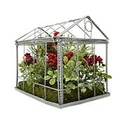"""Northlight 9"""" Cardinal Boxwood Artificial Christmas Greenhouse Arrangement - Red and Green"""