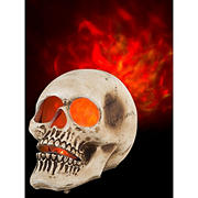 """Sunstar 10"""" Fire and Ice Skull Projection"""