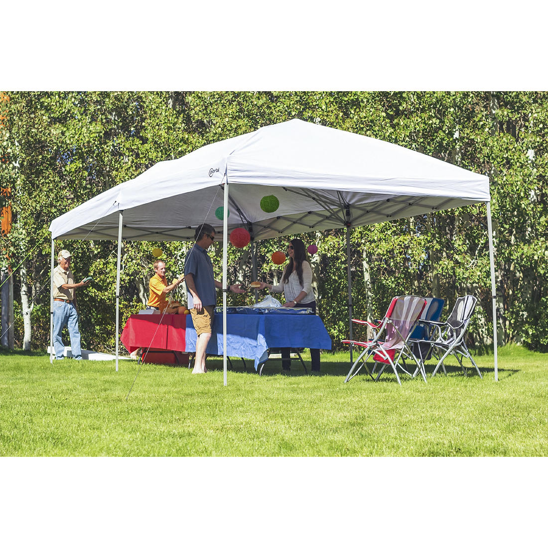Portal 10 X 20 Steel Frame Canopy With Rolling Carry Bag Bjs Wholesale Club