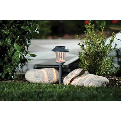 Berkley Jensen 5-Lumen Solar Pathway Lights, 8 pk. - Zinc