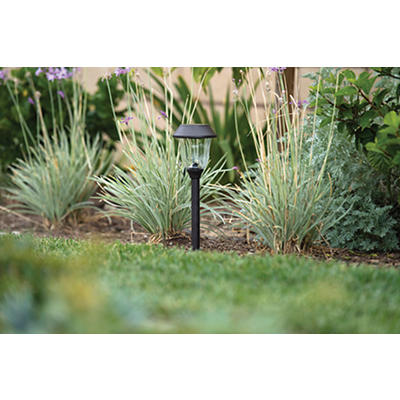 Berkley Jensen 3-Lumen Solar Pathway Light, 10 pk. - Bronze