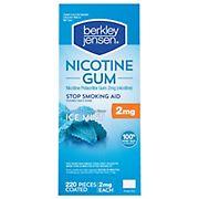 Berkley Jensen 2mg Ice Mint Coated Nicotine Gum, 220 ct.