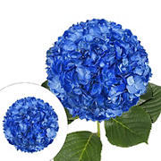 Hand Painted Metallic Blue Hydrangeas, 26 Stems
