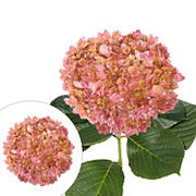 Hand Painted Metallic Pink Hydrangeas, 26 Stems