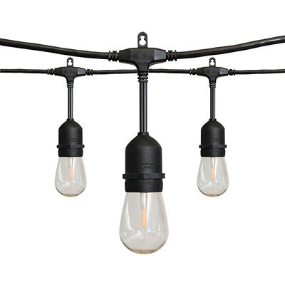 Alpan 36' Edison-Style LED String Lights - Black