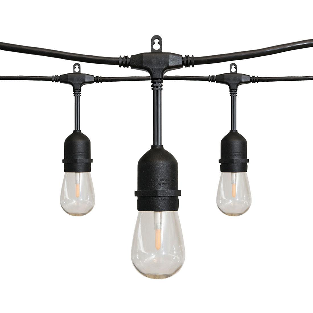 Alpan 36' Edison-Style LED String Lights - Black